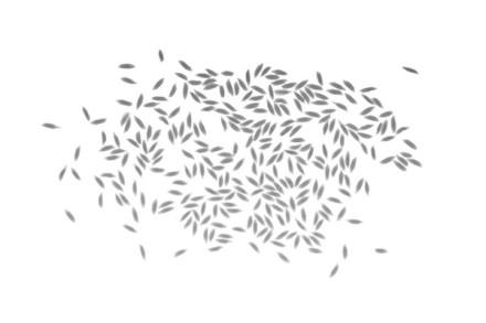 mieux_comprendre-corps-vapeur_riz