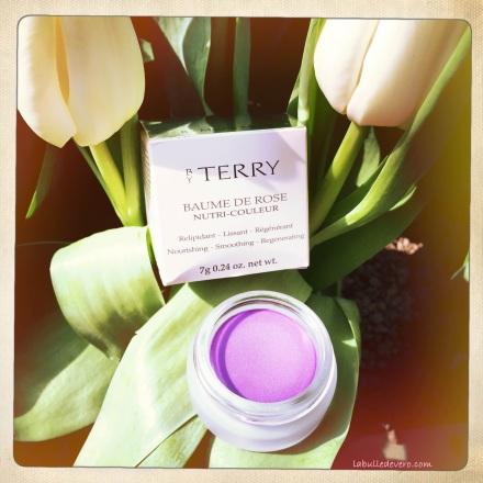 La bulle de Vero - Terry (7)