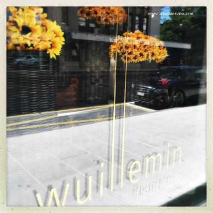 La bulle de Vero - Wuillemin. (3)