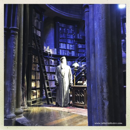 la-bulle-de-vero-harry-potter-13