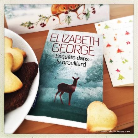 la-bulle-de-vero-elizabeth-george-2