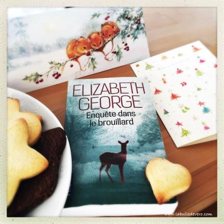 la-bulle-de-vero-elizabeth-george